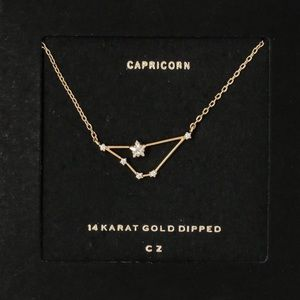 CAPRICORN | Constellation Dainty Zodiac Necklace